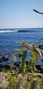 Wave San Cristobal 4